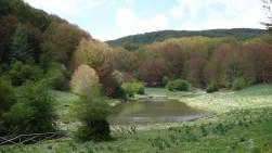 Dans le parc régional des monts Picentini