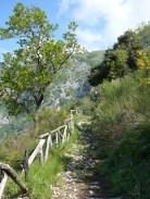 Le sentier montant dans le parc de Taburno