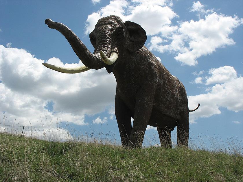 recreación del extingido Palaeoloxodon antiquus en las cercanias de Ambrona (Soria)