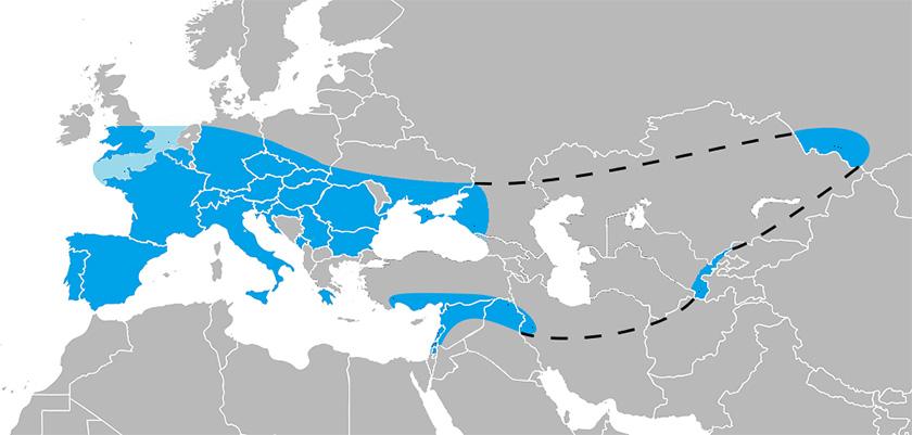 Maxíma expansión de los neandertales.