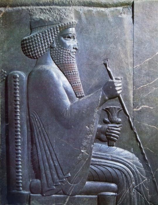 El rey persa Darío I