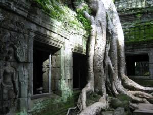 Angkor Wat (182)