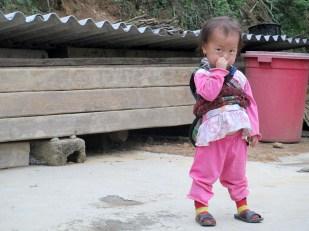 Hau Thao (153)