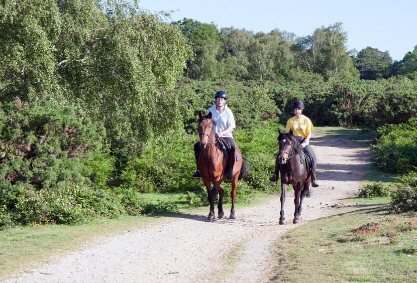 imagem-de-duas-pessoas-andando-a-cavalo