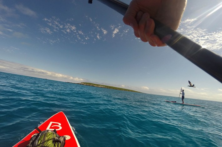stand up paddle abrolhos