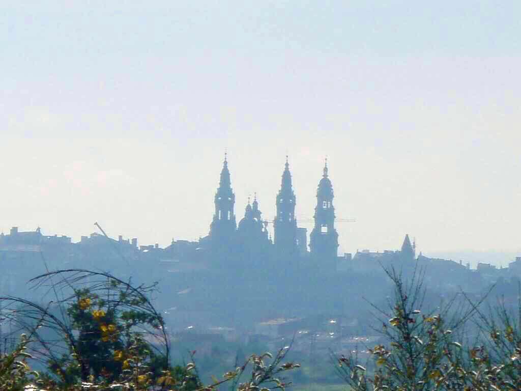 607サンティアゴ巡礼 サンティアゴ大聖堂 遠く1 カミーノ