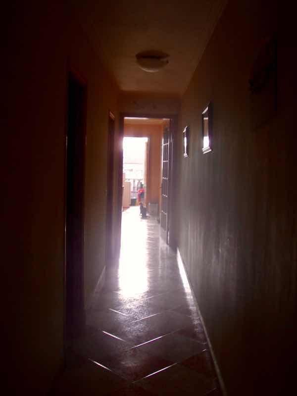 519メノルカ島 h家 ねこ授乳2