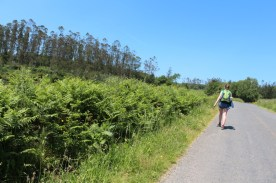 Heading to A Ribela and A Malata
