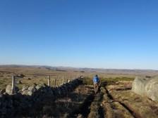 Crossing the high plains of Aubrac
