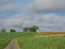 More pastoral French country roads.