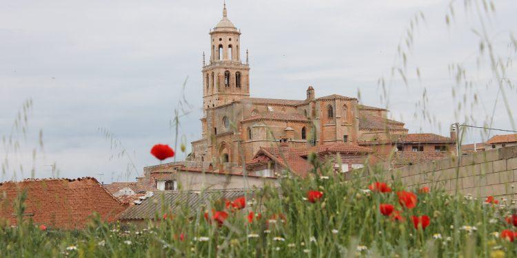 Ruta del Vino Arlanza - Santa María del Campo