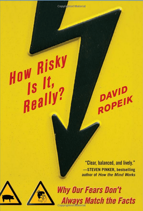 How_risky_is_it_really