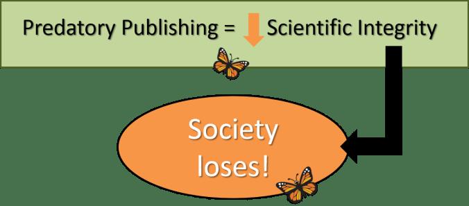 social-losses