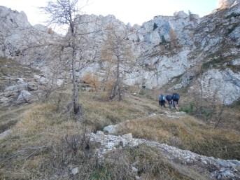 040-la-salita-della-versante-nord-dopo-malga-tintina