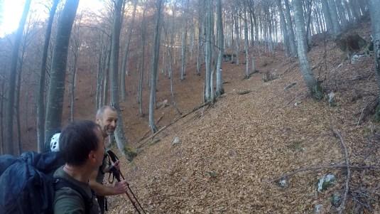 dogna-04-nel-bosco