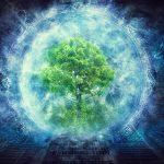 Innalzamento vibrazionale…L'importanza del radicamento…meditazione e visualizzazione