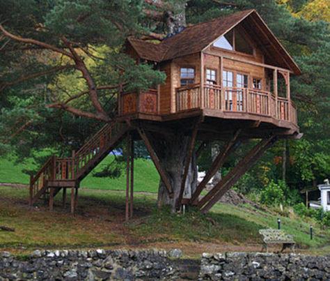 case-alberi