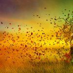 L'equinozio d'autunno…simboli e significati