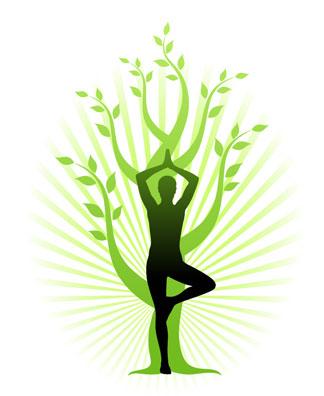 albero-yoga