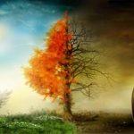 ATTRAVERSARE GLI OPPOSTI E CREARE LA VIA MAESTRA di Stefania Croci