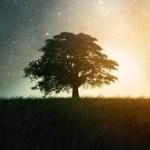 LUNA PIENA IN CAPRICORNO -28 GIUGNO 2018 di Hilary di Acquafortis Astrology