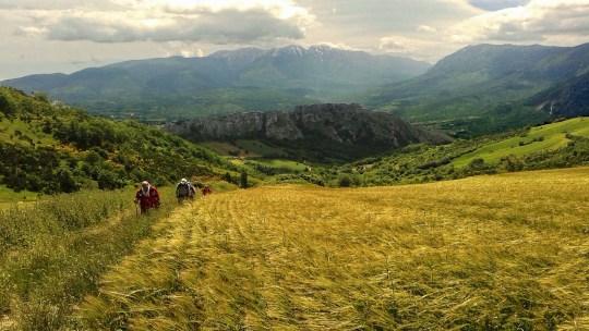 Il Cammino di San Tommaso: tra natura e spiritualità
