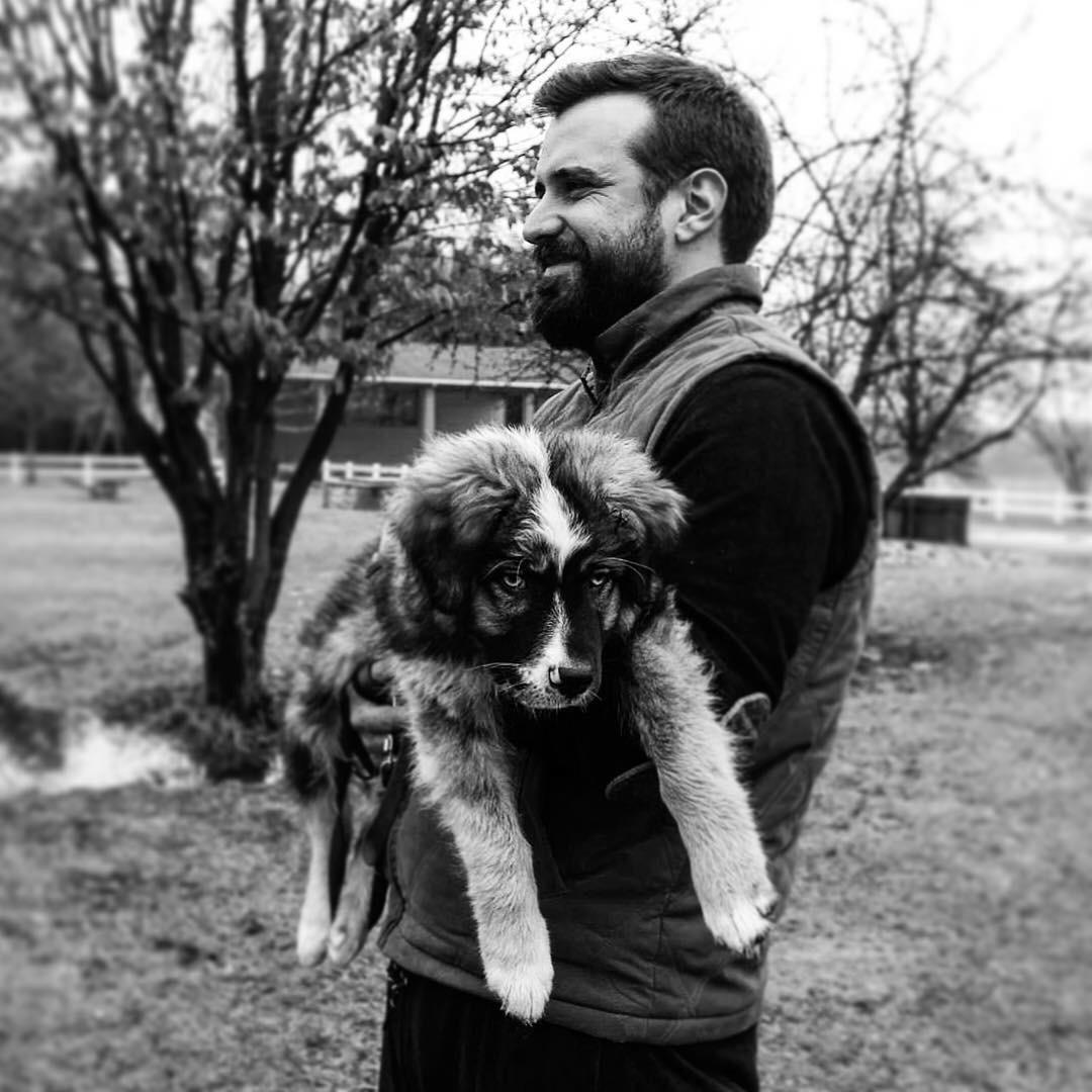 6 consigli per il Trekking con il cane