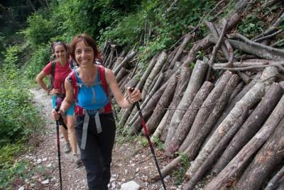 Cammino Terre Mutate Tappa 1 Fabriano Matelica bosco curato