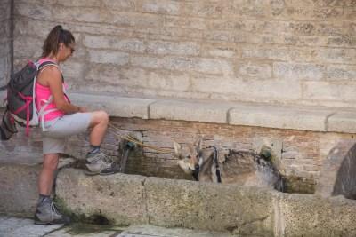 Cammino Terre Mutate Tappa 1 Fabriano Matelica camminatrice con il suo cane nella fontana