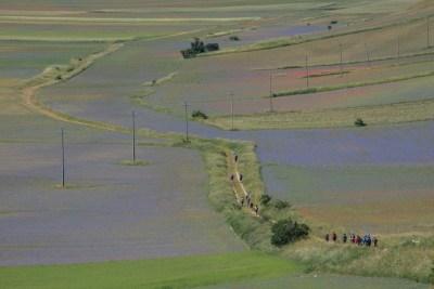 Cammino Terre Mutate Tappa 8 Castelluccio di Norcia - Arquata del Tronto (27)