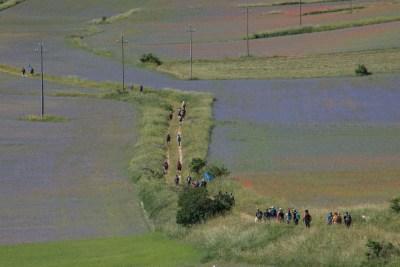Cammino Terre Mutate Tappa 8 Castelluccio di Norcia - Arquata del Tronto (29)
