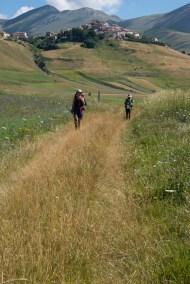 Cammino Terre Mutate Tappa 8 Castelluccio di Norcia - Arquata del Tronto (47)