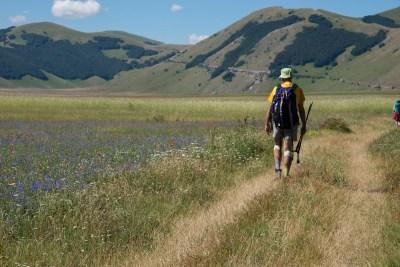 Cammino Terre Mutate Tappa 8 Castelluccio di Norcia - Arquata del Tronto (48)