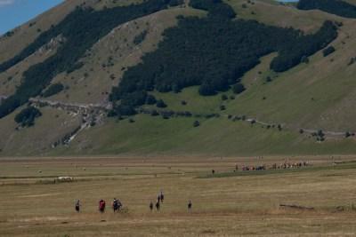 Cammino Terre Mutate Tappa 8 Castelluccio di Norcia - Arquata del Tronto (60)