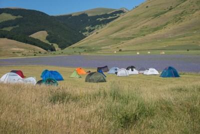 Cammino Terre Mutate Tappa 8 Castelluccio di Norcia - Arquata del Tronto (7)