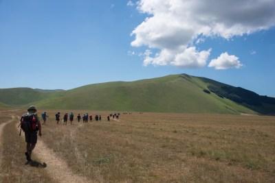 Cammino Terre Mutate Tappa 8 Castelluccio di Norcia - Arquata del Tronto (81)
