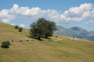 Cammino Terre Mutate Tappa 9 - Arquata del Tronto - Accumoli (26)
