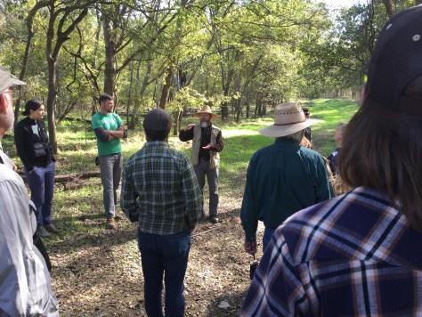 Explaining forest succession