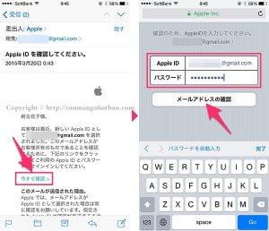 Mail xác nhận Apple ID itune Nhật Bản