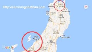 Vị trí 2 tỉnh phát dịch cúm gia cầm ở Nhật Bản