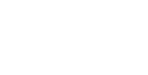 CAMOMILLE-Graphiste Webdesigner Freelance-LogoBlanc