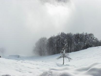 2015-01-18 860 (1024x768)