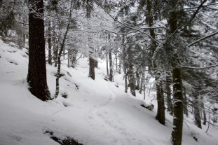 Gennaio 2014. Il sentiero Benne - Mea