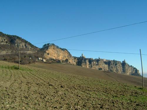 palmoni-montefalcone_r200