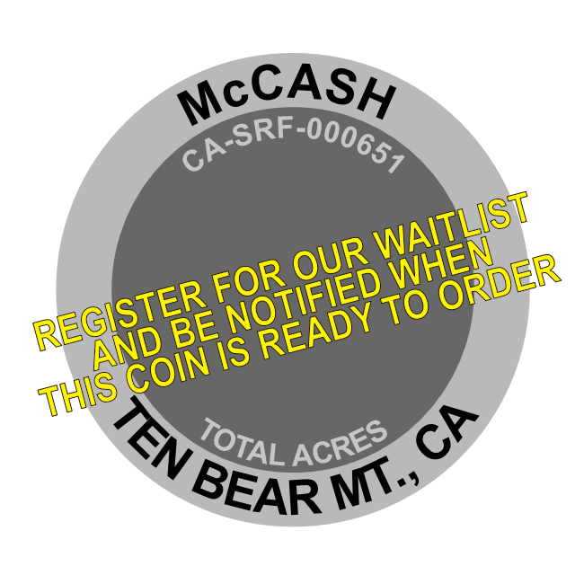 McCash Fire Challenge Coin