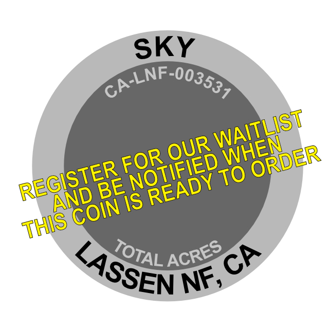 Sky Fire Challenge Coin