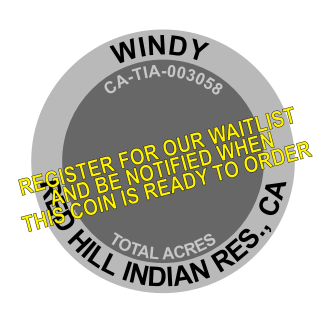 Windy Fire Challenge Coin
