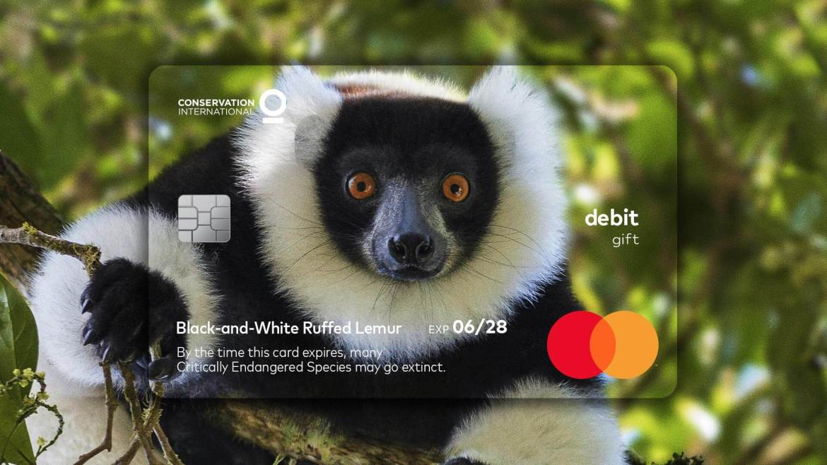 MasterCard: Wildlife Impact Card to highlight our short time frame to help protect wildlife
