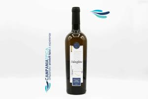 Falanghina  - Cardosa Die Weine aus dem Nationalpark del Cilento - Campaniatipica.it