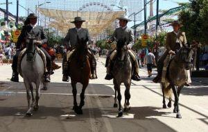caballos feria malaga